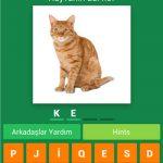 Hayvan Bilmece Cevapları